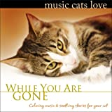 : Music Cats Love: While You Are Gone