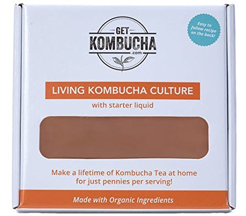 All Natural Organic Kombucha SCOBY - Largest Kombucha Mother Cultures In North America - Non Dehydrated, (6.5 inches in diameter) - Shipped With Organic Living Starter Tea Liquid
