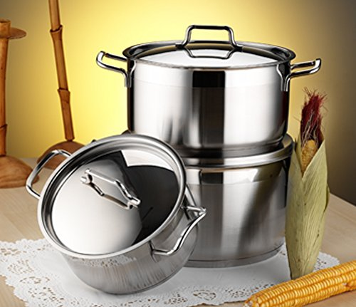 ANETT Large Deep Stainless Steel Casserole Cooking Stock Pot Induction Base (10 Ltr) HASCEVHER