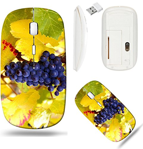 (Liili Wireless Mouse White Base Travel 2.4G Wireless Mice with USB Receiver, Click with 1000 DPI for notebook, pc, laptop, computer, mac book IMAGE ID: 5964515 Dry Brush Pinot Noir Grapes )