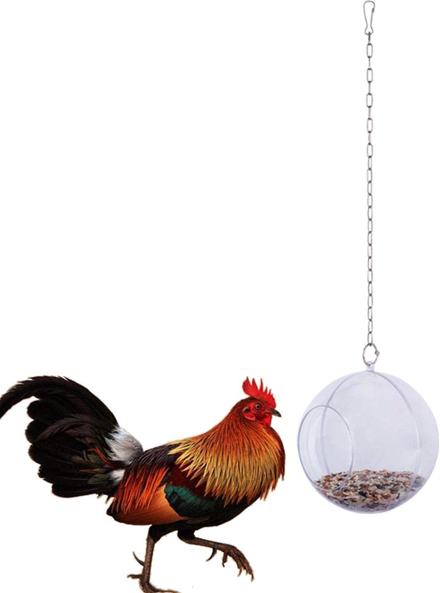 Lanermoon Chicken Hanging Foraging Toys for Hens Feeder Feeding Treat Ball with Veggie and Seed Food for Pet Parrot Bird