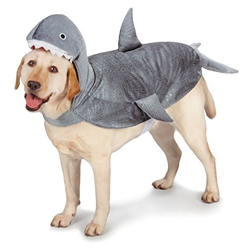 Land Shark Dog Costume (Casual Canine Casual Canine Shark Costume for Dogs, 16 Medium by Casual Canine)