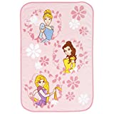 Disney Princess Scenic Coral Fleece Toddler Blanket, Pink