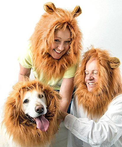 Pet Hero Lion Mane Dog Costume w/Ears for Medium to Big Dog - Bonus Free Lion's Tail - Great Family Fun - Gifts That Give Back