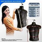 2-Pack Male Mannequin Torso, Dress Form Hollow Back
