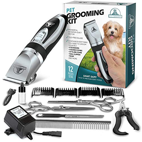 Pet Union Professional Dog Grooming Kit – Rechargeable, Cordless Pet Grooming Clippers & Complete Set of Dog Grooming Tools. Low Noise & Suitable for Dogs, Cats and Other Pets (Chrome)