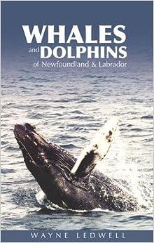 Book Whales & Dolphins of Newfoundland & Labrador