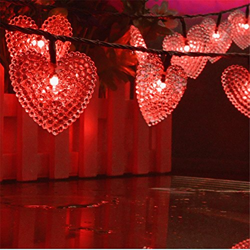 Heart Shaped Outdoor Lights in Florida - 9
