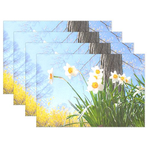 QYUESHANG Daffodils Spring Easter Blossom Nature Springtime Placemats Set Of 4 Heat Insulation Stain Resistant For Dining Table Durable Non-slip Kitchen Table Place Mats ()