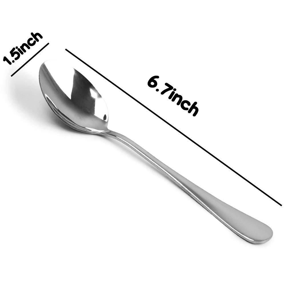 Stainless Steel Teaspoon,6.7-Inches