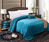 Mk Collection Queen/King Embossed Blanket Bedspread Modern Solid Color With Sherpa Backing Reversible Bed Cover New (TURQUOISE)