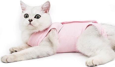 Alternativo para Gatos y Perros Traje de recuperaci/ón Profesional para heridas Abdominales o Enfermedades de la Piel despu/és de la cirug/ía Ropa para el hogar(P/úrpura,S