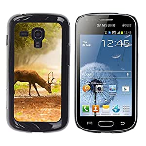 // PHONE CASE GIFT // Duro Estuche protector PC Cáscara Plástico Carcasa Funda Hard Protective Case for Samsung Galaxy S Duos S7562 / Comer ciervos /