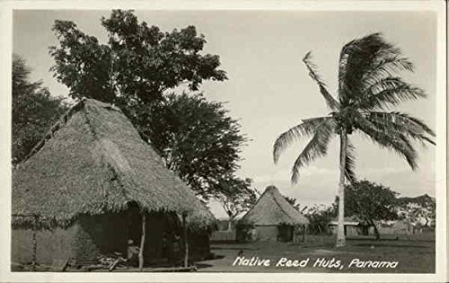 Native Reed Huts Panama Original Vintage Postcard (Native Huts Postcard)