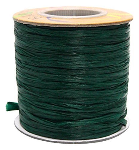 Homeford FHV000057105 100 yd Matte Raffia Ribbon, 1/4