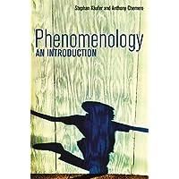 Phenomenology: An Introduction
