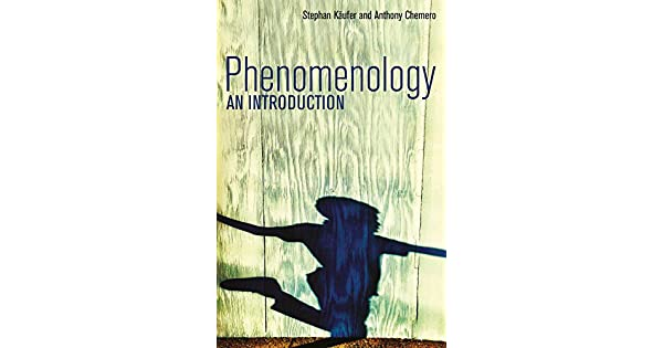 Phenomenology an introduction ebook stephan kaufer anthony phenomenology an introduction ebook stephan kaufer anthony chemero amazon loja kindle fandeluxe