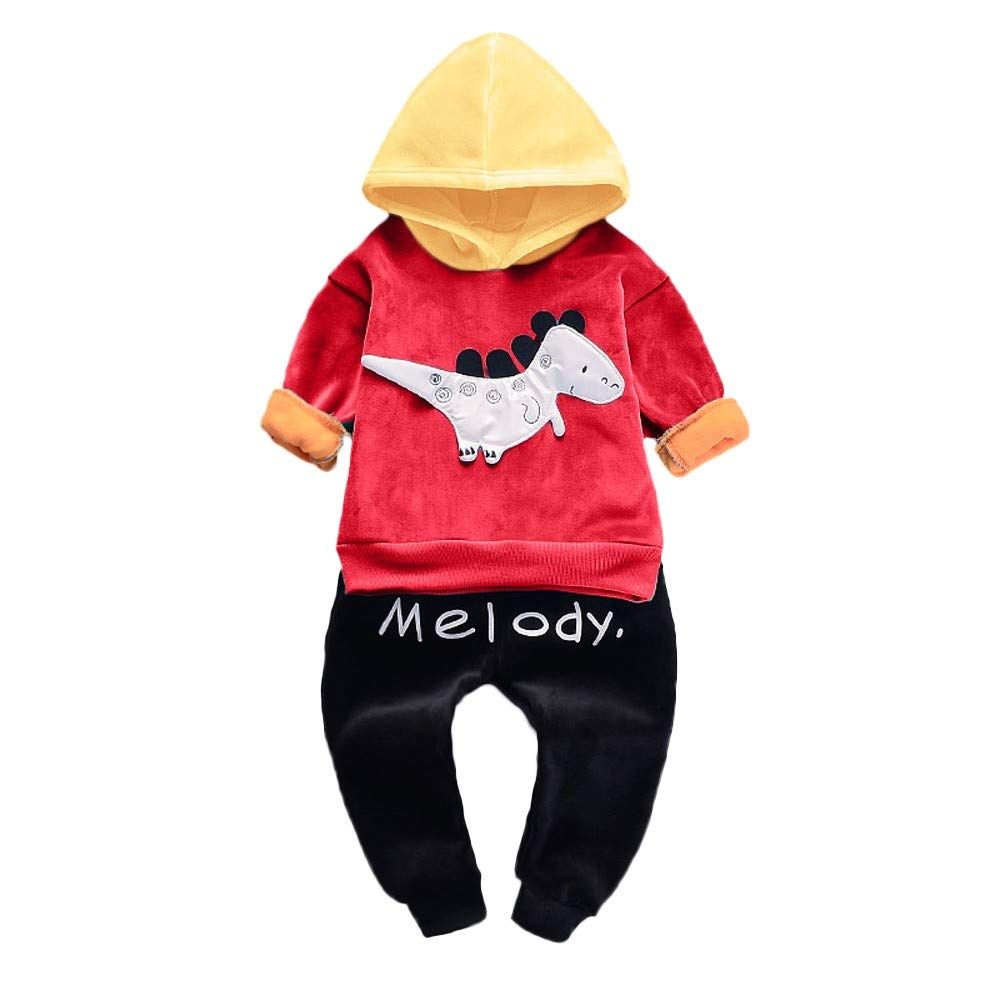 Lurryly❤Unisex Clothes Set,Baby Boys Girls 2-Piece Dinosaur Hoodie Tops,Pant,Outfit Clothes for 0-3 T