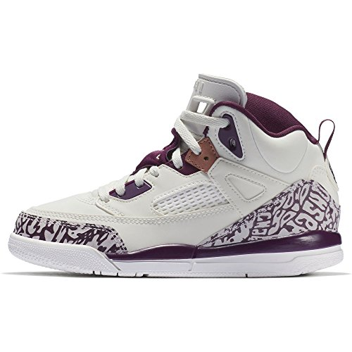 brand new 80664 eb959 Jordan Girl s Spizike Basketball Shoes, Sail Bordeaux-Metallic Red Bronze 2Y