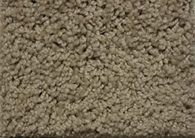 Indoor Area Rug -Sand Dollar 32oz - plush textured carpet for residential or commercial use with Premium BOUND Polyester Edges.