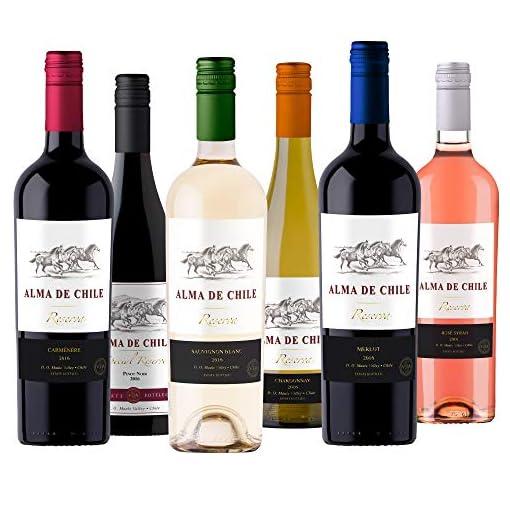 51EsCcGFigL Taste-of-Chile-Mixed-Chilean-Wine-Case-6-x-75cl
