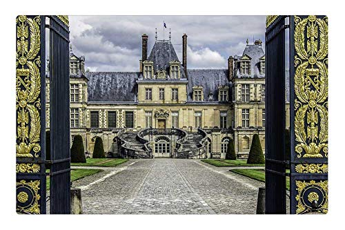 Indoor Floor Rug/Mat (23.6 x 15.7 Inch) - Castle of Fontainebleau Residence Royal French