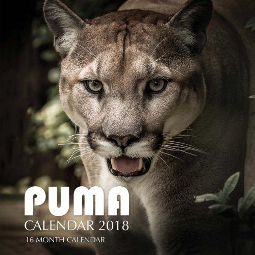 Puma Calendar 2018: 16 Month Calendar ebook