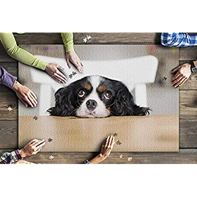 Cavalier King Charles Spaniel Puppy Dog Begging for Food 9022626 (Premium 1000 Piece Jigsaw Puzzle for Adults, 20x30, Made in USA!): Toys & Games