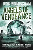 Front cover for the book Angels of Vengeance by John Birmingham
