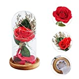 SuBoZhuLiuJ LED String Night Light Decor with Glass Lampshade Rose Flower for home wedding party Valentine's Day Deco Gift