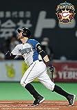 (仮)北海道日本ハムファイターズ ブランドン・レアード 本塁打王 I LOVE SUSHI! [DVD]