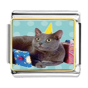 Chicforest Gold Plated Birthday Cat Bracelet Link Photo Italian Charms