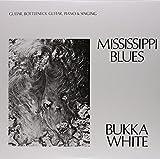 Best Delta Beards - Mississippi Blues (180 Gram Vinyl) Review
