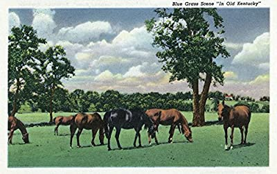 Kentucky - View of Horses Grazing; Blue Grass Scene in Old Kentucky (9x12 Collectible Art Print, Wall Decor Travel Poster)