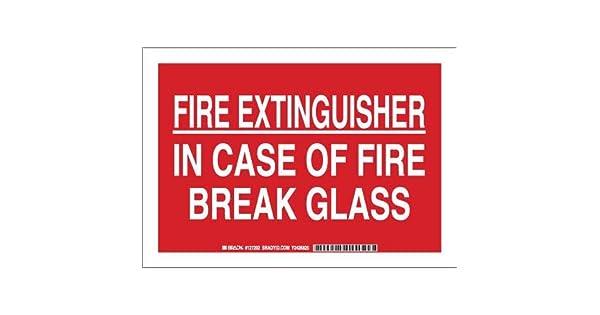 Amazon.com: Brady 127204 Seguridad contra incendios signo ...