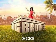 Big Brother, Season 23