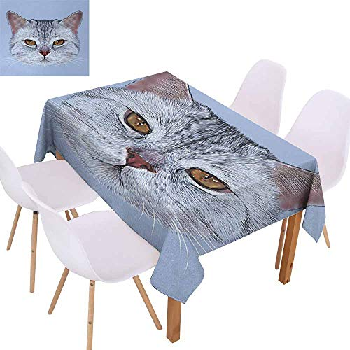 - UHOO2018 Cat,Microfiber Tablecloth,Scottish Straight Kitty Portrait Pet Lovely Companion Hipster Animal Graphic,Great for Holiday Dinner,Light Grey Baby Blue,55