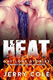 Heat: Gay Love Stories (Romance Short Story Anthology Book 4)