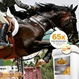 Bute-Less Performance Comfort & Recovery Supplement