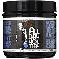 Rich Piana 5% Nutrition All Day You May BCAA & Joint Recovery Drink (Blue Raspberry) 17.2oz (465 Grams) 30 Servings