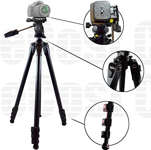 + Microfiber Cloth GZ-EX555 GZ-EX355 GC-PX100 /& More.. GV-LS1 GZ-EX515 80-Inch Elite Series Professional Heavy Duty Camcorder Tripod BP SLR Backpack for JVC Everio GZ-EX310 GZ-VX815,GZ-HD520