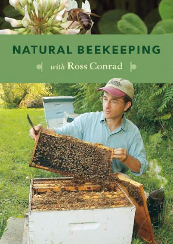 natural beekeeping - 4