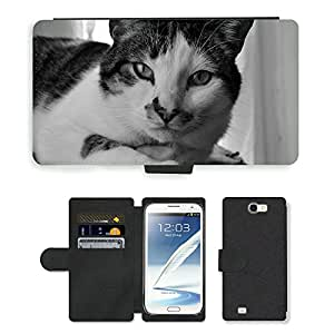 Hot Style Cell Phone Card Slot PU Leather Wallet Case // M00113812 Cat View Pet Animal Portrait // Samsung Galaxy Note 2 II N7100