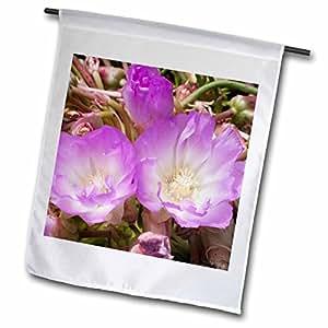 VWPics Flowers - Bitter Root.(Lewisia redivida).Northern California - 18 x 27 inch Garden Flag (fl_45968_2)