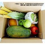 美ら島野菜果物お任せセット お試しセット 鮮度ばっちり 沖縄県産の旬の野菜やフルーツの詰め合わせ