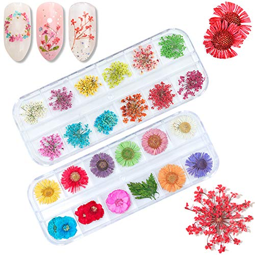 (Dried Flowers Nail Art Supplies Nail Stickers Decals Accessories 48 Natural Colored Real Dry Nail Flowers Design DIY Nail Art Decoration Manicure Nail Foil Vinyls Stencils Applique)