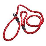 1PCS 1.2m Red Adjustable Pet Dog Nylon Loop Slip Traning Leash Lead Rope Slip Dog Leash and Collar