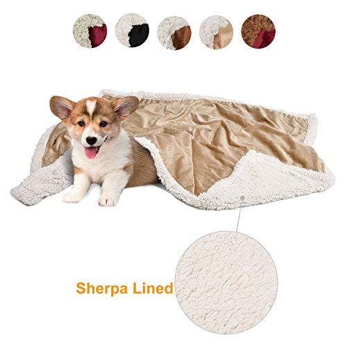 Puppy Blanket,Super Soft Sherpa Dog Blankets and Throws Cat Fleece Sleeping Mat for Pet Small Animals 45x30 Latte