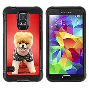 All-Round híbrido Heavy Duty de goma duro caso cubierta protectora Accesorio Generación-II BY RAYDREAMMM - Samsung Galaxy S5 SM-G900 - Red Puppy Dog Funny Pet Cute Canine