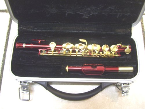 Piccolo with case, red